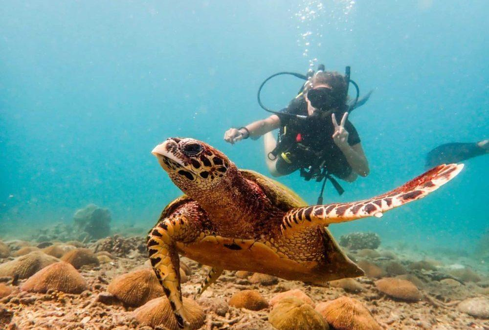 A Guide to Visiting Koh Tao